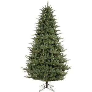 15 x 98 Catalina Frasier Fir Christmas Tree w/ 10977T