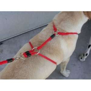 Xtreme No Pull Harness for dogs 20 lbs. and up   animal