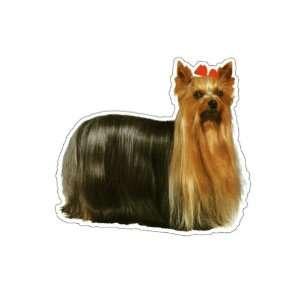 YORKSHIRE TERRIER  Dog Decal   sticker car got yorkie