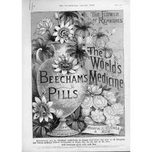 Flower Of Remedies Antique Advertisment Beecham Pills