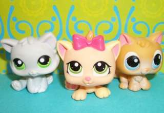 LPS BABY KITTEN/KITTY CAT LOT~#47 1336 88 ORANGE~Littlest Pet Shop