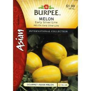 Burpee 69636 Asian   Melon Early Silver Line Hybrid Seed