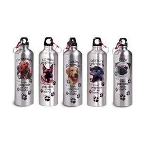Dog Breed Water Bottle   Pug