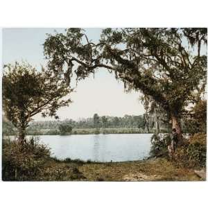 Reprint Florida. Tomoka River. The Kings Ferry 1898: Home