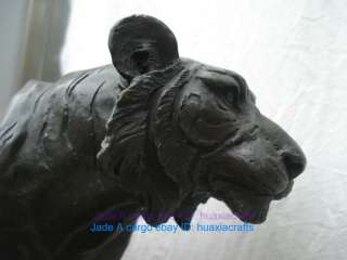 Bronze statue sculpture Bengal Tiger Big cat Beast King