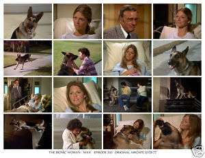 BIONIC WOMAN photo 3.10 LINDSAY WAGNER Max Bionic dog