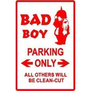 BAD BOY PARKING joke humor people NEW sign: Home & Kitchen