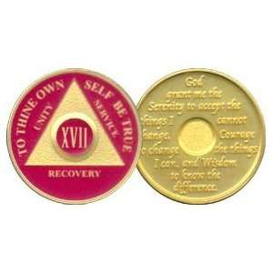 17 Year 24K Gold Plated AA Birthday   Anniversary Recovery