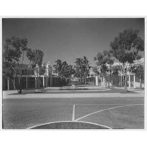 Photo Ponciana Plaza and Coconut Row, Palm Beach, Florida. Center view