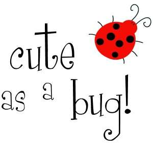 Cute as a Bug   Lady Bug   Children Vinyl Wall Decal