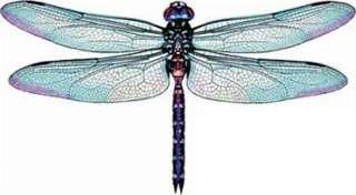 3D Aqua Marine Blue Pink Dragonflies Nursery Baby