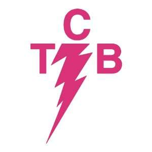 TCB Elvis PINK Vinyl window decal sticker Office Products