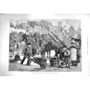 1880 IRELAND TURF MARKET STREET SCENE HORSES CARTS