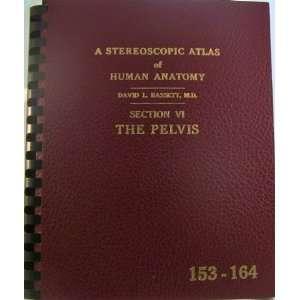 VI, The Pelvis, View Master Reels 153 164) David L. Bassett Books