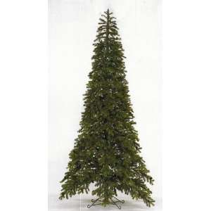 7.5 Ft. Black Hills Spruce Tree with Cones by Select