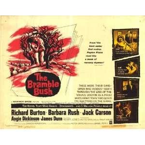The Bramble Bush Movie Poster (11 x 14 Inches   28cm x 36cm) (1960