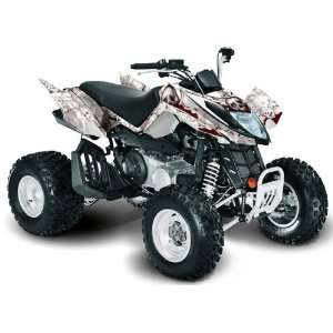 Arctic Cat DVX400, DVX300 and DVX250 models. All Years. ATV Quad G