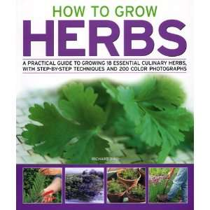 Guide to Growing 18 Essential Culinary Herbs, with Step by Step