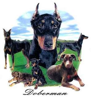 DOBERMAN PINSCHER DOG TANK TOP OR T SHIRT IN COLORS 714