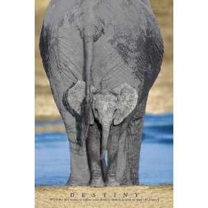 Motivational   Elefantenmutter und Baby   Tier Poster Foto Elefanten