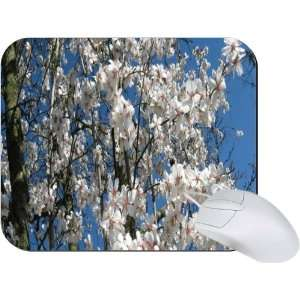 Rikki Knight Cherry Blossom Tree Branches Mouse Pad Mousepad   Ideal