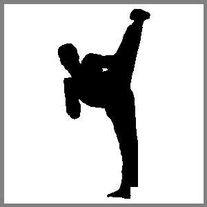 Karate Martial Arts Sports Figure #05 Auto Car Truck Window Sticker