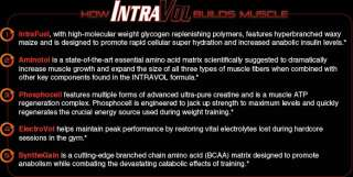 How IntraVol builds Muscle Chart