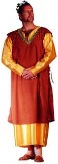 MEN PLUS SIZE MEDIEVAL KING ROYALTY COURT ADULT COSTUME