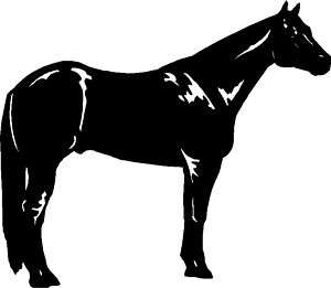 Quarter Horse Sticker,Graphic,Decal Car, Truck, Trailer