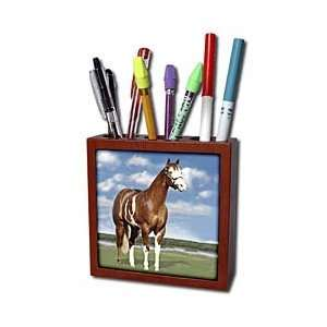 Horse   Champion Paint Quarter Horse   Tile Pen Holders 5